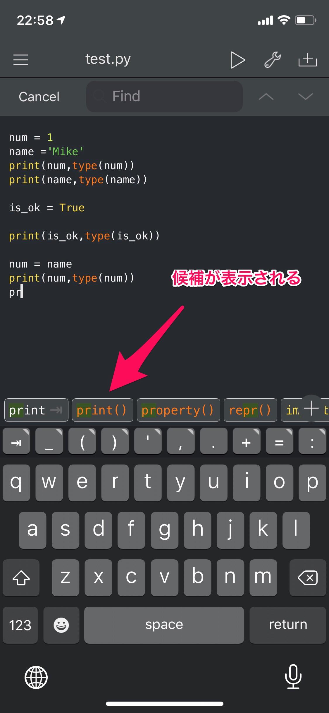 Pythonista Python