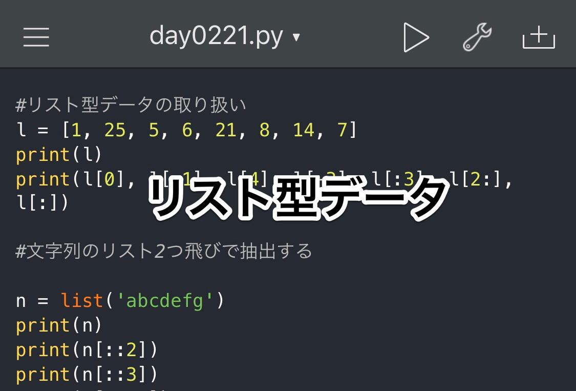 Python リスト型データ Braces