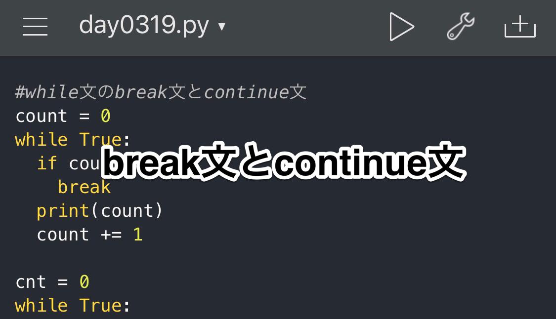 Python while文の使い方 breakとcontinue
