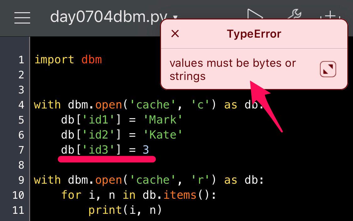 Python DBM