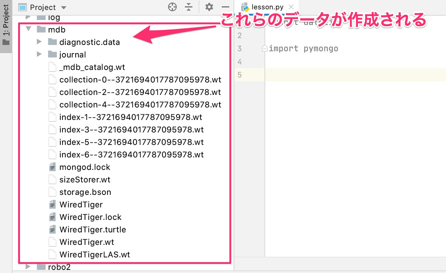 Python MongoDB インストール