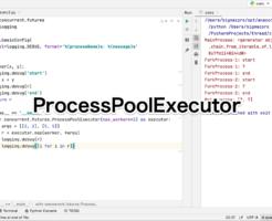 Python ProcessPool Executor
