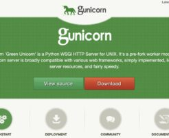Python gunicorn
